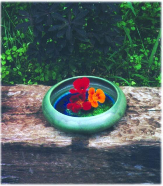 Gazing bowl